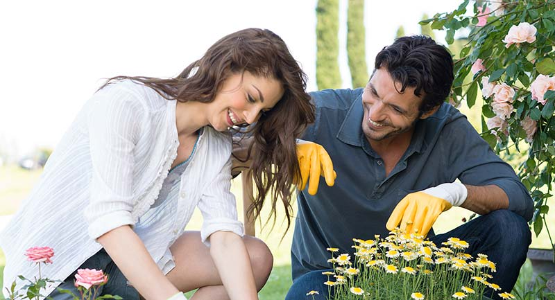 Couple Gardening For Fun, Health And Exercise