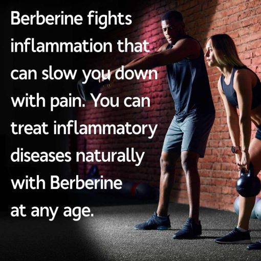 Berberine Fights Inflammation That Can Slow You Down